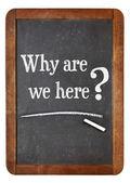 Neden biz burada soru — Stok fotoğraf