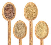 Flax seed and meal — Stock Photo