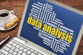 Data analysis word cloud on laptop — Stock Photo