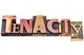 Tenacity word abstract typography — Stock Photo