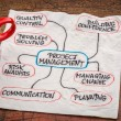 Project management flow chart or mindmap — Stock Photo #75770099