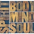 Body, mind, soul and spirit in wood type — Stock Photo #77244206