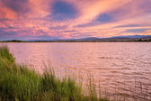 Pink sunset cloudscape over lake — Stock Photo