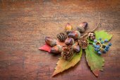 Rustic wood with fall decoration — Stock Photo