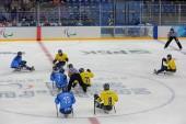 Sledge hockey — Stock Photo