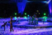 Christmas show in Olympic Stadium — Stock fotografie