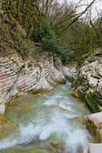 Picturesque canyon of river Psakho — Stock Photo