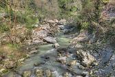 Agura river — Stock Photo