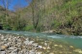 Khosta river in Caucasian biosphere — Stock Photo