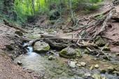 Mountain river Ulu-Uzen East — Zdjęcie stockowe