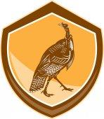 Turkey Walking Shield Retro — Stock Vector