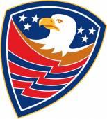 American Bald Eagle Head Flag Shield Retro — Stock Vector