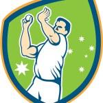 Australian Cricket Fast Bowler Bowling Ball Shield Cartoon — Stock Vector #55124533