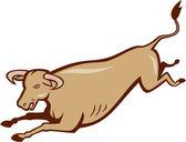 Bull Cow Jumping Cartoon — Wektor stockowy