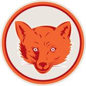 Red Fox Head Front Circle Retro — Stock Vector