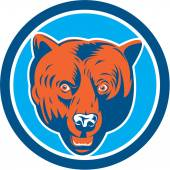 Grizzly Bear Head Front Circle Retro — Stock Vector