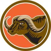 African Buffalo Head Side Circle Retro — Stock Vector