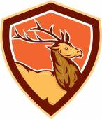 Deer Stag Buck Head Shield Retro — Stock Vector
