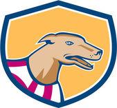 Greyhound Dog Head Side Shield Retro — Stock Vector