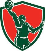Basketball Player Rebounding Lay-Up Ball Shield — Stock Vector