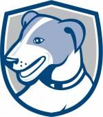 Jack Russell Terrier Head Shield Cartoon — Stock Vector