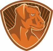 Sheepdog Border Collie Shield Retro — Vector de stock