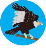 California Condor Perching Branch Circle Retro — Stock Vector