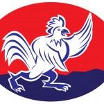 Rooster cockerel crowing — Stock Vector #67889189