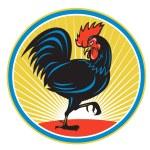 Rooster cockerel crowing — Stock Vector #67889257