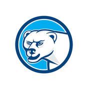 Polar angry bear — Stock Vector