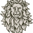 Angry Lion Big Cat Head Etching — Stock Vector #69664545
