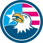 American Bald Eagle Head Flag Side Cartoon — Stock Vector #70019253