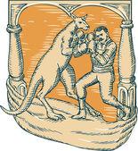 Kangaroo Boxing Man Etching — Stock Vector