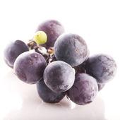 Black grape — Stock Photo