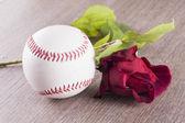 Baseball and rose — Stock Photo