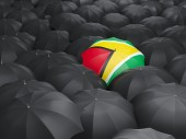 Umbrella with flag of guyana — Stock Photo