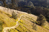 Steep Dirt Path Up Hill Side Mount Diablo California — Stock Photo