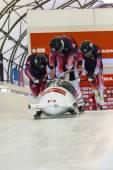 Bobsleigh World Cup  Calgary  Canada   2014 — Stock Photo