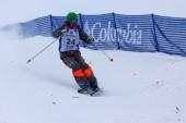 FIS Freestyle Ski World Cup - 2015 Calgary — Foto de Stock