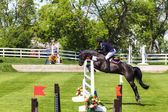 Spruce Meadows International hors jumping competition, — Stock Photo