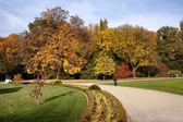 Aleja w parku jesień — Zdjęcie stockowe