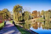 Moczydlo Park in Warsaw — Zdjęcie stockowe
