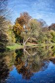 Skaryszewski Park in Warsaw — Zdjęcie stockowe