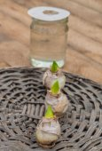 Hyacinth bulbs before forcing of flowering — Stock Photo