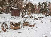 Public garden in Kiev — Stockfoto