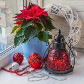 Poinsettia and Christmas decor — Stock Photo