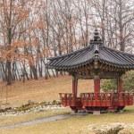 Korean traditional garden — Stock Photo #63771867