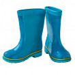 Two Blue gumboots — Stock Photo #67448435
