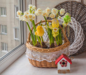 Easter decoration with daffodils — Stock Photo