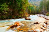 Triglavska bistrica creek — Stock Photo